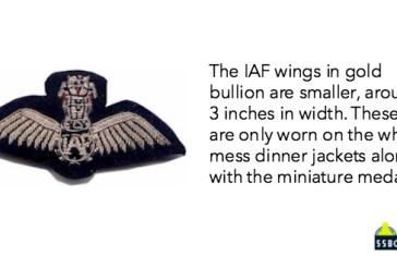 Indian air force pilot golden badge