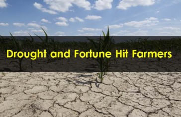 Drought-and-Fortune-Hit-Farmers