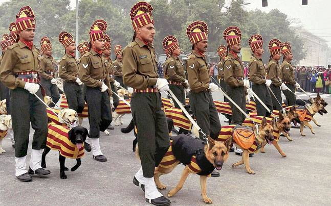 RVC Dogs at Rajpath