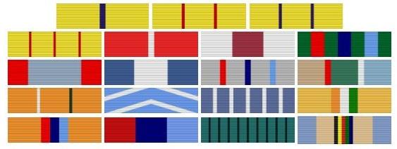 Lt Gen Devraj Anbu Medals