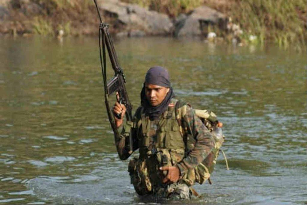 COBRA Operators are attune to the jungle
