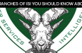 3 Core Branches Of Pakistans ISI You Should Know About